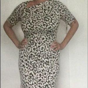 Calvin Klein Ivory/Black Size 8 Dress